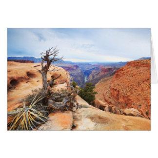 Cartes Canyon grand vide