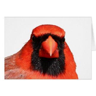 Cartes Cardinal du nord