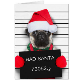 Cartes Carlin de Noël - chien de photo - carlin de père