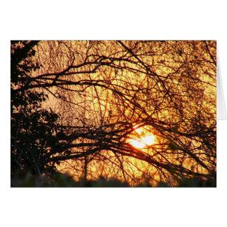Cartes Carte-lettre de lever de soleil