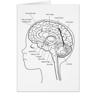 Cartes Ce qui est dans votre cerveau