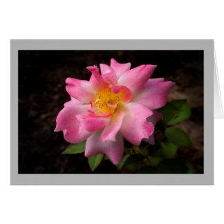 Cartes Centre d'or de rose vibrant de rose