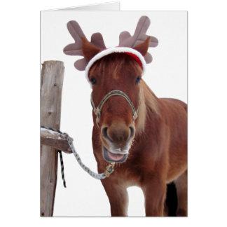 Cartes Cerfs communs de cheval - cheval de Noël - cheval