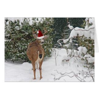 Cartes Cerfs communs de Noël