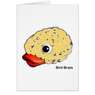 Cartes Cerveau d'oiseau