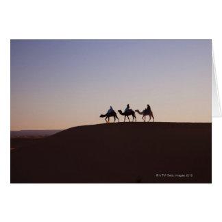 Cartes Chameaux de monte de personnes, Maroc