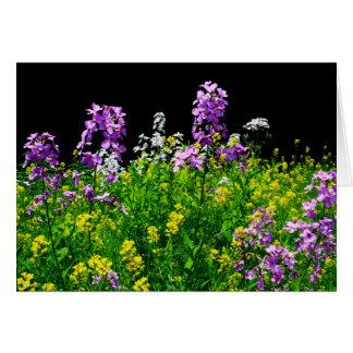 Cartes [Champ de fleur sauvage de fleurs colorées] -