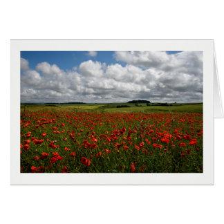 Cartes Champ rouge de pavot de Dorset