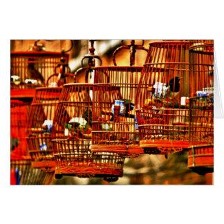 Cartes Chant d'oiseau de Changhaï Streetside