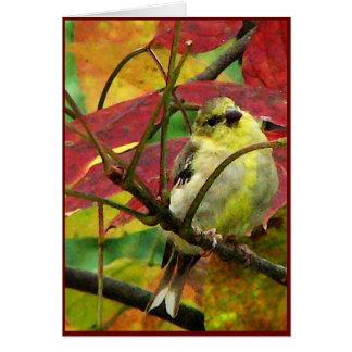 Cartes Chardonneret et feuille d'automne