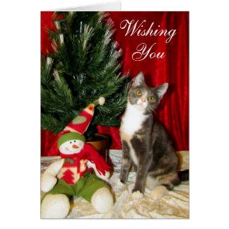 Cartes Chat, chaton, Noël, délivrance, photo