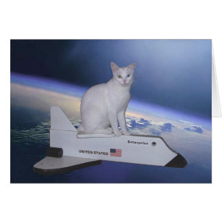 Cartes Chat d'astronaute (esprit) sur la navette spatiale
