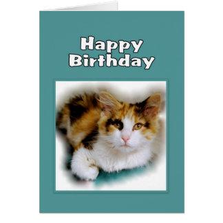 Cartes Chat de calicot de joyeux anniversaire