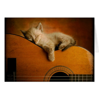 Cartes Chat dormant sur la guitare