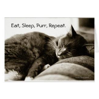 Cartes Chat dormant sur le sofa