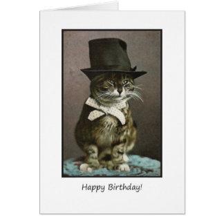Cartes Chat drôle d'anniversaire dans le casquette