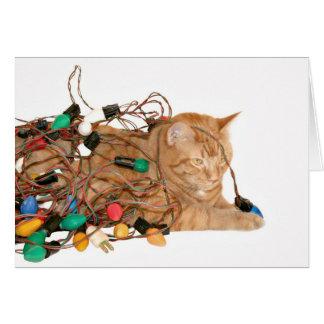 Cartes Chat embrouillé dans des lumières de Noël