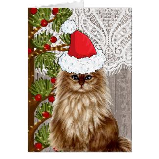 Cartes Chat habillé dans le casquette de Père Noël pour
