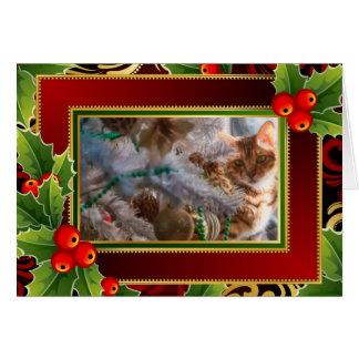Cartes Chat sur Noël - arrière - plan de vacances