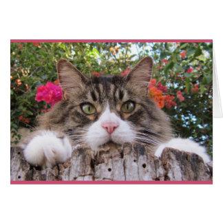 Cartes Chat tigré sur le tronçon d'arbre avec la