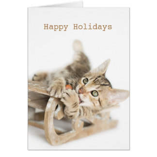 Cartes Chaton de Sleigh Dasher d'hiver