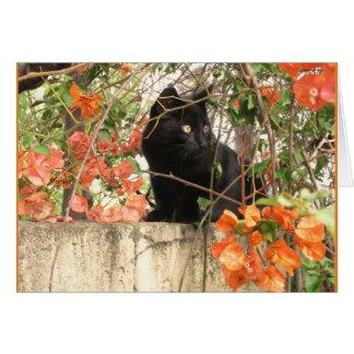 Cartes Chaton noir avec les fleurs oranges