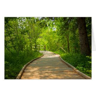 Cartes Chemin bordé d'arbres