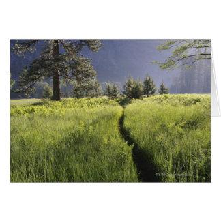 Cartes Chemin dans le pré, parc national de Yosemite