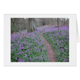Cartes chemin de jacinthe des bois