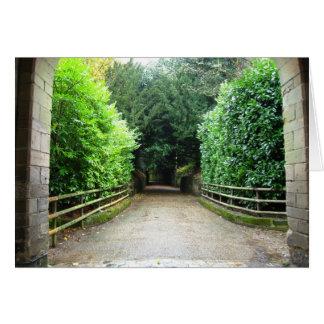 Cartes Chemin vert