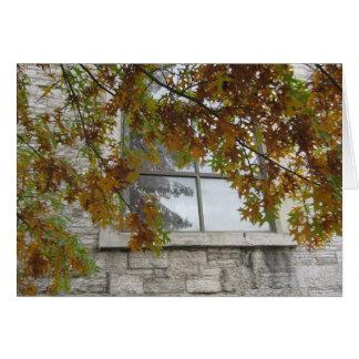 Cartes Chêne de l'automne de St Paul