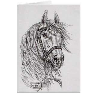 Cartes cheval