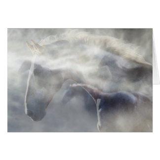 Cartes Cheval/carte de sympathie équine