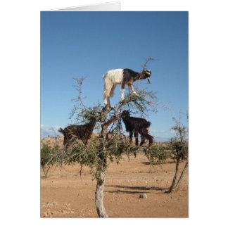 Cartes Chèvres drôles dans un arbre