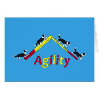 Cartes Chien d'agilité
