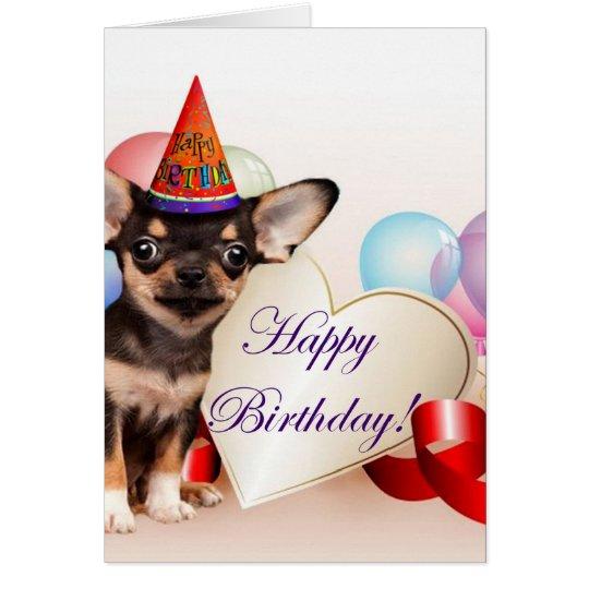 anniversaire chien chiwawa