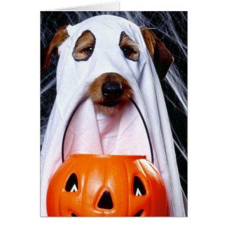 Cartes Chien de fantôme - chien drôle - poursuivez