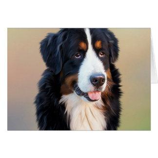 Cartes Chien de montagne de Bernese, le chien obéissant