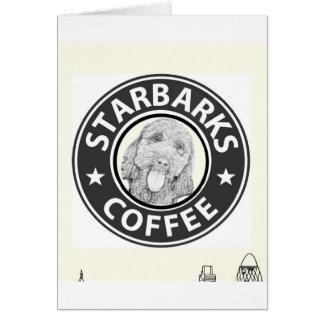 Cartes chien Starbucks