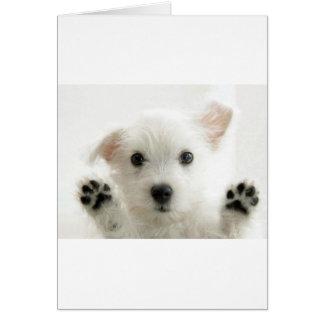 Cartes Chiot adorable