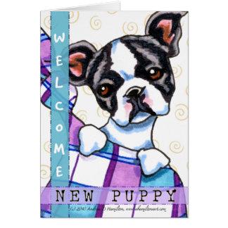 Cartes Chiot bienvenu de Boston Terrier nouveau