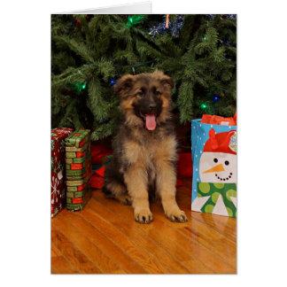 Cartes Chiot de berger allemand à Noël