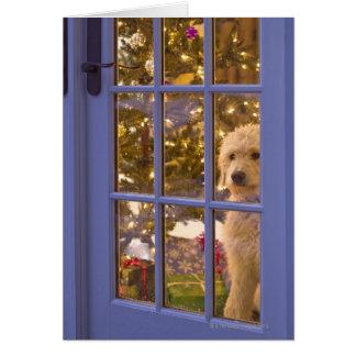 Cartes Chiot d'or de griffonnage regardant la porte en