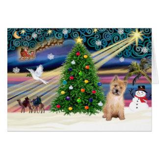 Cartes Chiot magique de Terrier de cairn de Noël