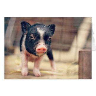 Cartes Chiot pie de porc pour des amants de porc