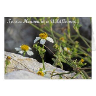 Cartes Ciel dans un fleur sauvage