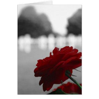 Cartes Cimetière et rose rouge - Jour du Souvenir