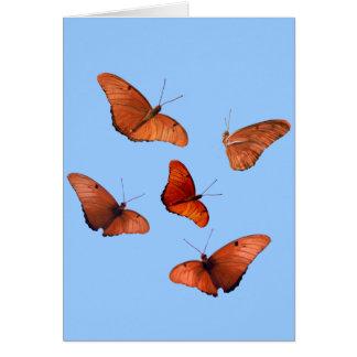 Cartes Cinq papillons de Julia