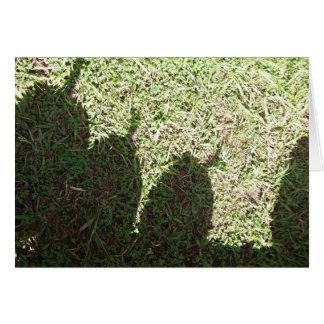Cartes Citrouilles d'ombre