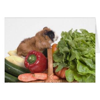 Cartes cobaye dans un panier des légumes
